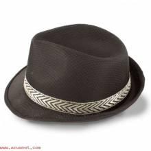 Sombrero Premium Cinta Exterior N-037