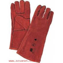 Guantes Winnipeg