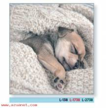 Calendario Bolsillo Perro Dormido