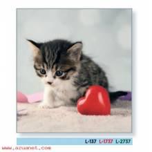Calendario Bolsillo Gato - Corazón