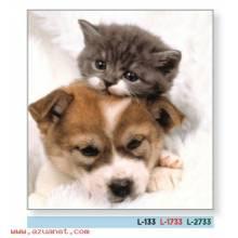 Calendario Bolsillo Perro Y Gato