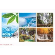 Calendario Trimestral Agua 2016 Nº228