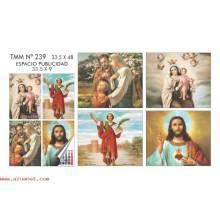 Calendario Trimestral Santos Nº239