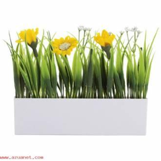 Planta Decorativa Botania Oferta